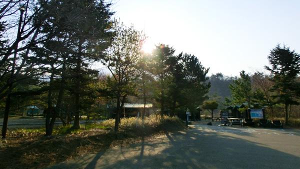 旬のウニ丼~アポイ岳登山で 8