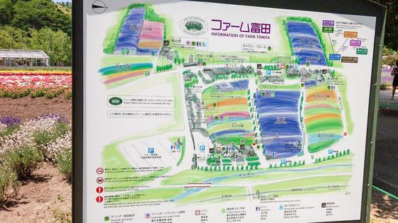 青い池とジュンドック(富良野から美瑛へ) 2