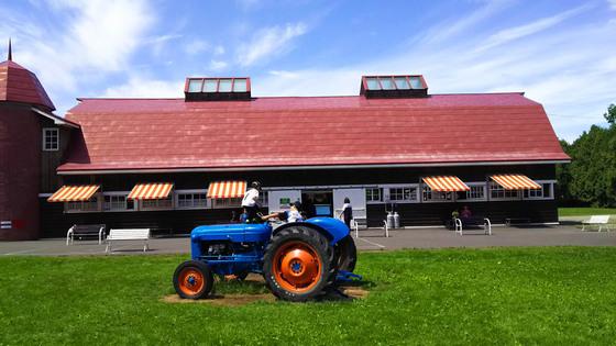 八紘学園 農産物直売所のソフトクリーム 5